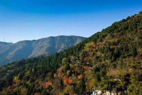 【跑山营越野训练赛】2020年